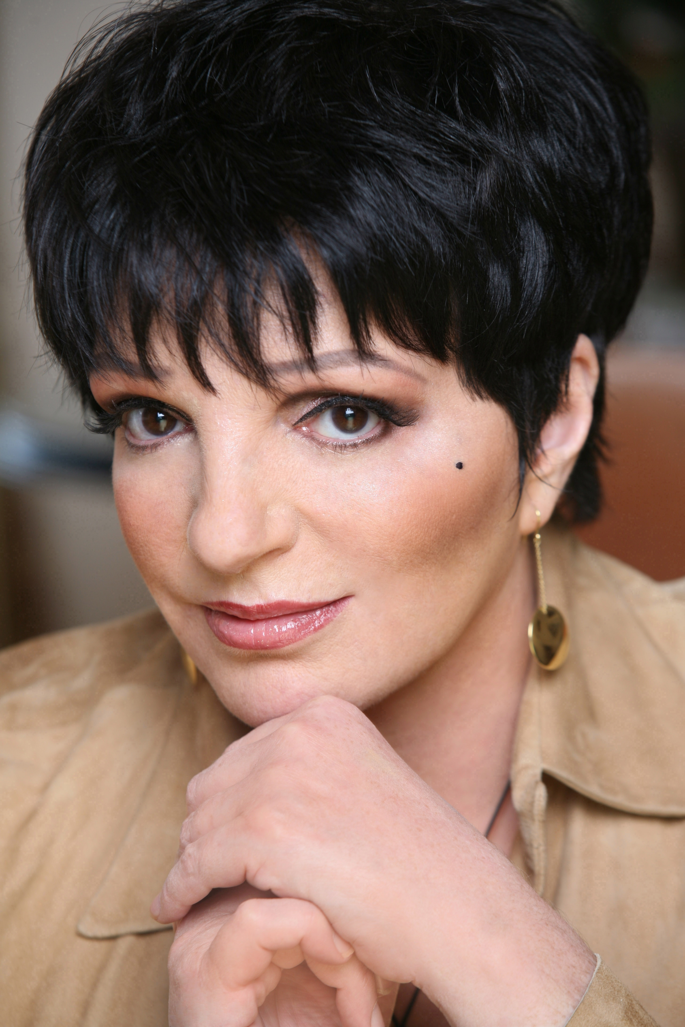 Liza minnelli paul roth 39 s music liner notes for House of liza